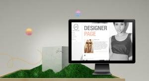 web banner skin 3